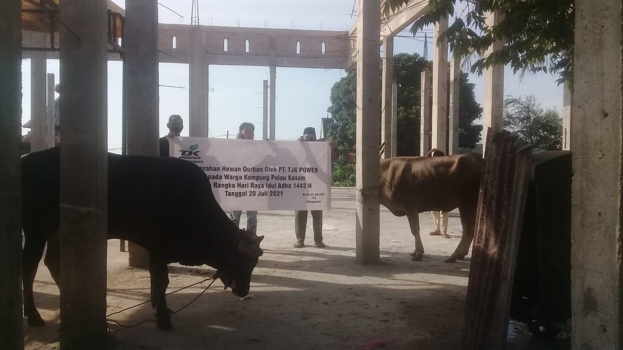 Foto Hari Raya Qurban, PT TJK Power, Salurkan hewan kurban, TJK Power, TJK Power Salurkan hewan kurban